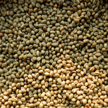 Tanzania Paeburry Green Coffee Beans