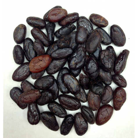 Organic Cacao beans